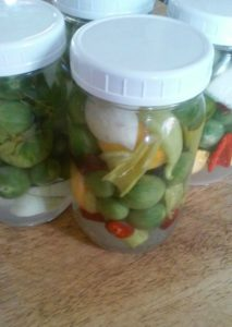 vegetables harvested before frost and made into a pickled medly