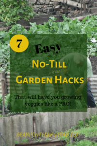 No-Till Garden Hacks. Using these methods you will easily have your most magnificent garden ever! These methods are easy and inexpensive, making you a pro at growing veggies!