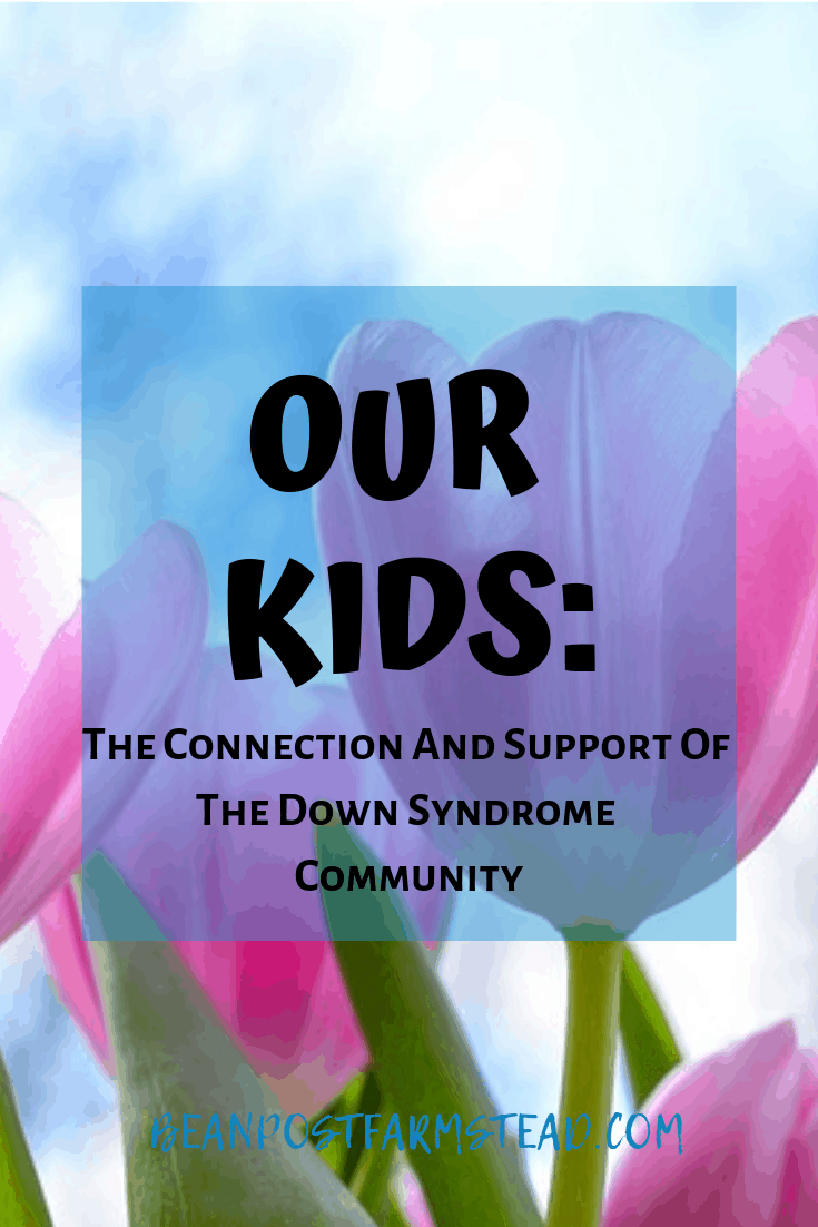 Our Kids- The Connection And Support Of The Down Syndrome Community-Pinterest