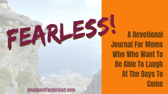Graphic for a free 30-day journal for moms -Fearless!
