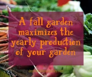 "picture of fall grown vegetables with an overlay of a quote ""a fall garden maximizes the yearly producition of your garden"