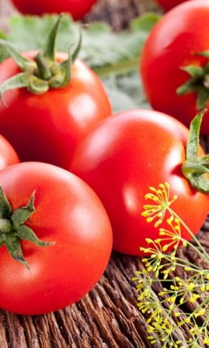 garden tomatoes and dill super easy guide garden planning course