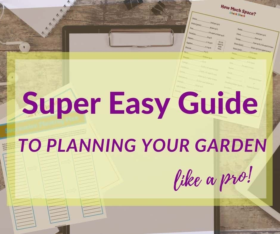 when to plant fall vegetables. super easy guide to planning your garden like a pro is a garden planning guide for beginning gardeners. #gardening vegetable gardening tips
