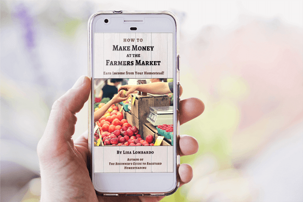 How To Make Money At the Farmer's Market by lisa lombardo, growing food, selling from your homestead, your homestead business, gardening for profit